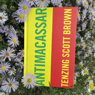 small crop Antimacassar